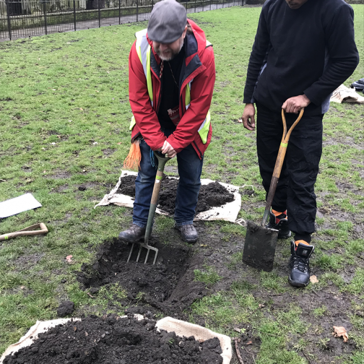 Digging the hole for the apple tree