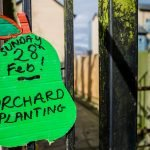 Community Orchards – Open or Closed?