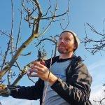 HMVCG Winter Prune