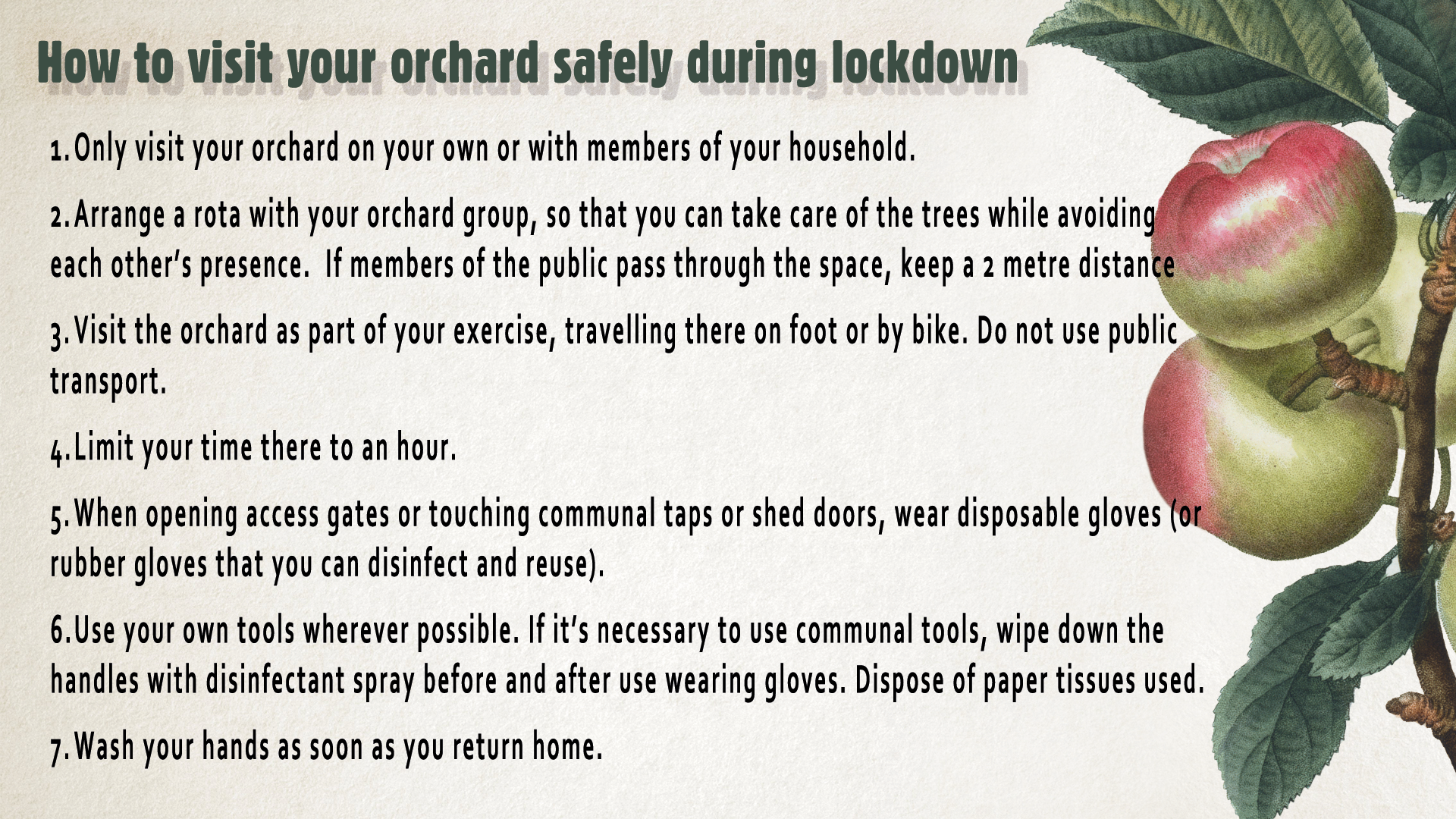Lockdown_Visit your orchard safely Graphic_April 2020