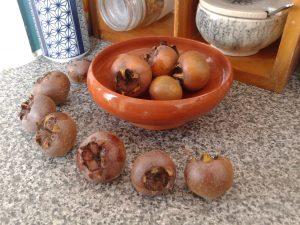 medlar fruit ripening