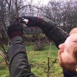 Moor Nook Park Winter Pruning