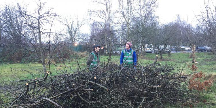Pruning in Platt Fields