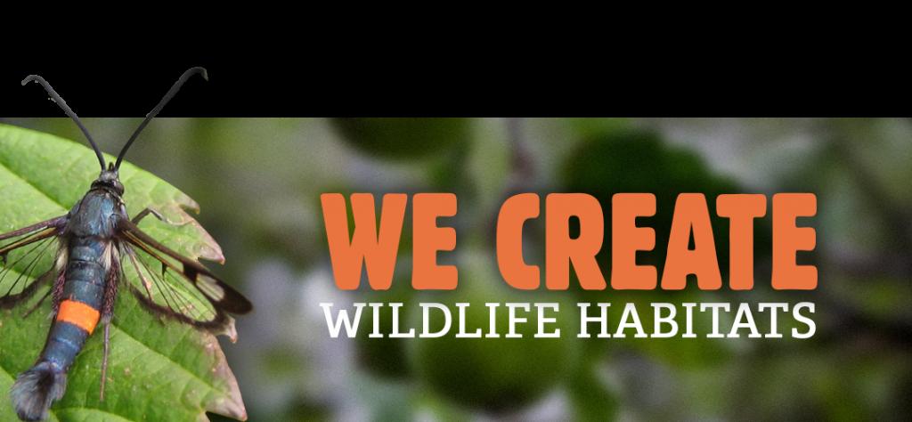 We create wildlife habitats