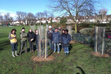 Guard reduction: freeing your fruit trees
