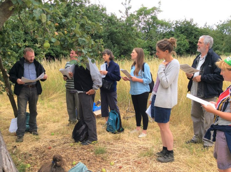 students in Dick Turpin orchard in July