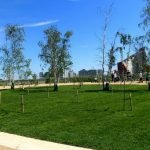 London 2012 Olympic Legacy – The Mandeville Place Orchard